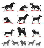 Dogs set. Vector Royalty Free Stock Photography