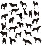 Dogs shapes vector Royalty Free Stock Image