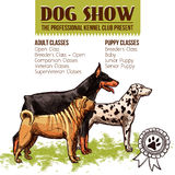 Dogs Show Illustration. Dogs show with sketch doberman dalmatian and shar-pei profiles vector illustration Stock Images