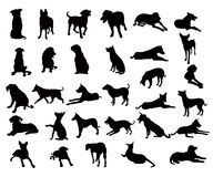 Dogs Silhouette Set -vector Stock Photography