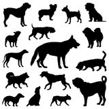 Dogs silhouettes, Vector Set Royalty Free Stock Photo