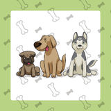 3 Dogs sitting. Vector cartoon style with seamless background Royalty Free Stock Image
