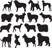 Dogs, sketch. Silhouettes of the dogs different sort. in different positions Royalty Free Stock Image