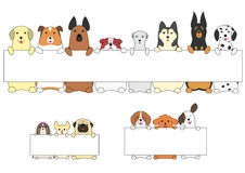 Dogs standing with the card. Various breeds of cute dogs sitting up with a card Stock Image