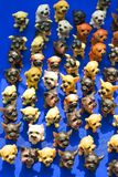 These dogs are terracotta colored position display at spring fairs stock image
