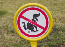 Dogs to shit on the lawn. Stock Photo