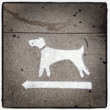 Dogs Turn Left in New York City. Dogs turn left on New York City sidewalk with Instagram effect filter Royalty Free Stock Photo