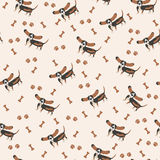 Dogs Vector Seamless pattern. Dog Basset Hound, bone, paw print. Stock Photos