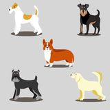Dogs vector set of icons and illustrations. Vector icons dogs set isolated on a gray background stock illustration