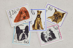 Dogs on vintage post stamps from Poland Stock Image