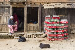 Dogs and woman resting in front of small shop, Bandipur, Nepal. Dogs and woman resting in front of small shop with piles of crates of Coca-Cola bottles in remote Stock Image