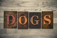 Dogs Wooden Letterpress Theme Royalty Free Stock Photo