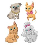 Dogset. Illustration of a cute dogs set Stock Images