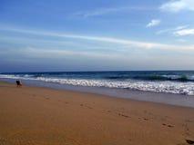 Dogwalk op het strand Royalty-vrije Stock Fotografie