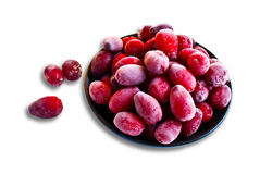 Dogwood berries Royalty Free Stock Photo