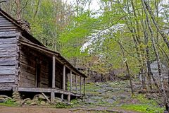Dogwoods Are Blooming Around The Bud Ogle Place In The Smokies. Stock Image