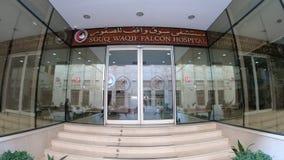 Souq Waqif Falcon Hospital stock video footage