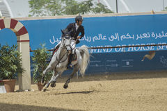 Action from the  CHI Al Shaqab 2013 Stock Images