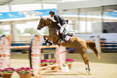 Action from the  CHI Al Shaqab 2013 Royalty Free Stock Photography
