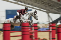 Action from the  CHI Al Shaqab 2013. DOHA, QATAR - March 30: Horseback action during the CHI Al Shaqab International equestrian event on March 30, 2013 in Doha Stock Photos
