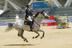 Action from the  CHI Al Shaqab 2013 Royalty Free Stock Image