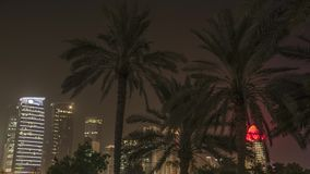 Doha Qatar palm trees with skyline in the background stock video footage