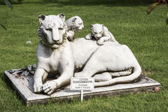 Dohlmabace Palace Istanbul Lion Sculpture. A lioness with two cubs sculptures in the gardens . Dohlmabace Palace, Istanbul, Turkey stock image