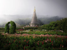 Doi Inthanon Stock Foto's