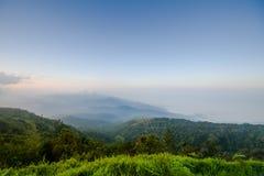 Doi Inthanon e névoa da manhã, montanha em Tailândia Imagem de Stock Royalty Free