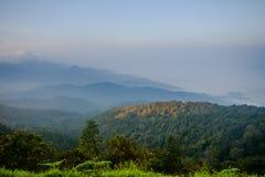 Doi Inthanon e névoa da manhã, montanha em Tailândia Fotografia de Stock