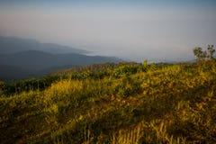 Doi Inthanon e névoa da manhã, montanha em Tailândia Fotos de Stock