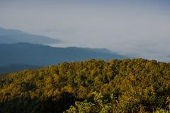 Doi Inthanon e névoa da manhã, montanha em Tailândia Imagens de Stock
