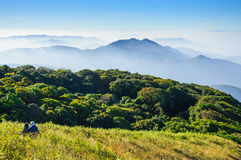Doi Inthanon national park, ChiangMai, Thailand. Landscape of Doi Inthanon national park, ChiangMai, Thailand stock photos