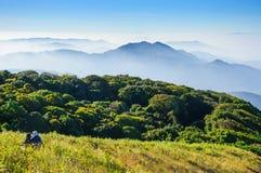 Doi Inthanon nationalpark, ChiangMai, Thailand Arkivfoton