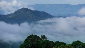 Doi Inthanon nationalpark, Thailand Arkivfoto