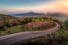 doi inthanon park narodowy punkt widzenia zdjęcia royalty free