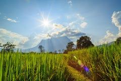 Doi Luang Chiang Dao, la terza più alta montagna in Tailandia Fotografia Stock Libera da Diritti