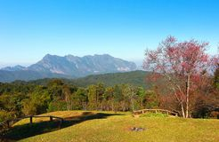 Doi luang chiang dao mountain at chiangmai thailand Royalty Free Stock Image