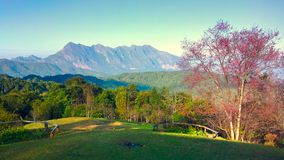 Doi luang chiang dao mountain at chiangmai thailand Stock Photos
