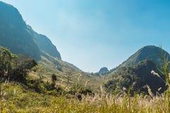 Doi Luang Chiang Dao Mountain Landscape Stock Images