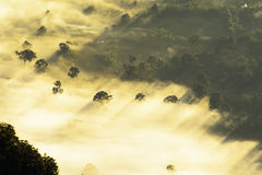 Doi luang chiang dao Royalty Free Stock Photography