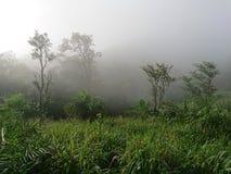 Doi Luang Tak blisko podstawowego obozu Obraz Royalty Free