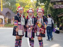 Portrait of group beautiful asian lady Akha tribe in Chiang rai,Thailand royalty free stock images