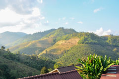 Doi Mae Salong Mountain, Chiang Rai, Thailand 6 Stockbild