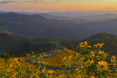 Doi Mae U Kho evening Stock Photography