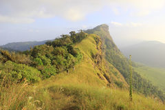 Doi Monjong, a peaceful mountain, in Chiangmai, Th Royalty Free Stock Photos