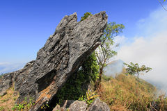 Doi Pha Tang in Wiang Kaen district,Chiang Rai,Thailand. Doi Pha Tang is a viewpoint on top of a high cliff over the Thai-Laotian border affording a delightful stock photography