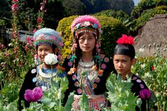 Doi Poi, Thailand: Three Thai Women in Traditional Clothing Stock Photography