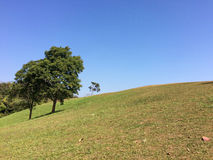 Doi Samer Dow. Meadow on the hill at Doi Samer Dow Royalty Free Stock Images