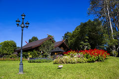Doi Tung palace in Chiangrai, Thailand Stock Images